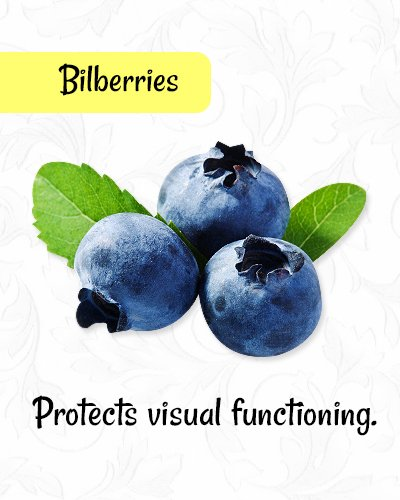 Bilberries for Healthy Eyes