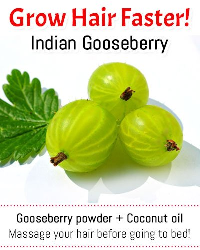 Indian Gooseberry for Hair Regrowth