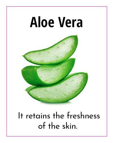 Aloe Vera Natural Moisturizer