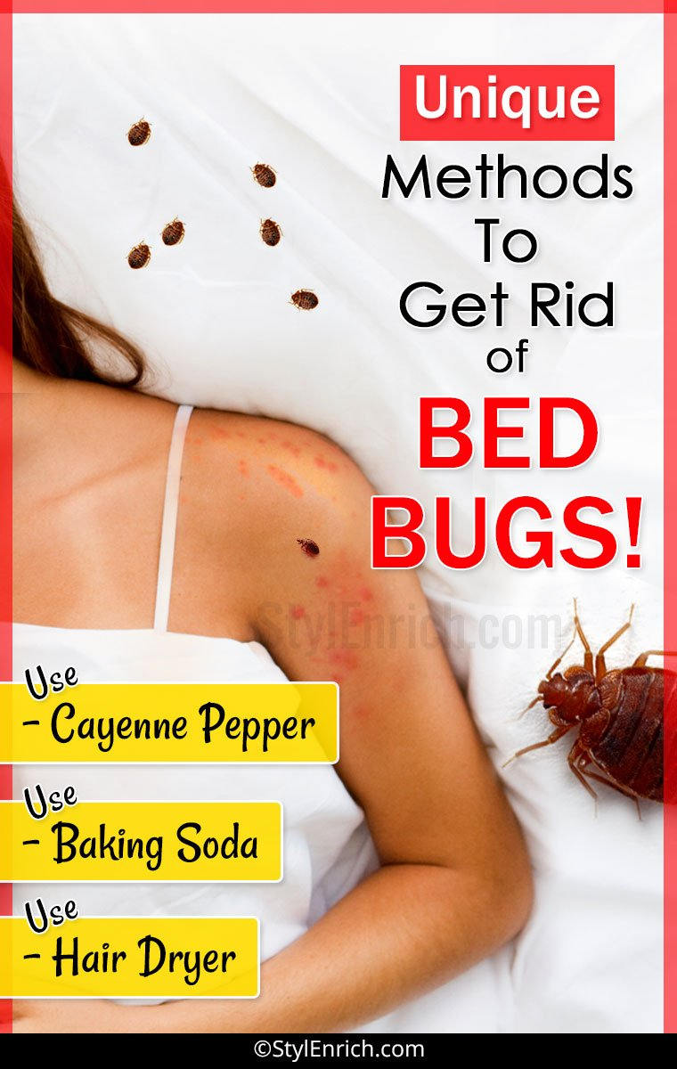 How-to-get-rid-of-bed-bugs - StylEnrich