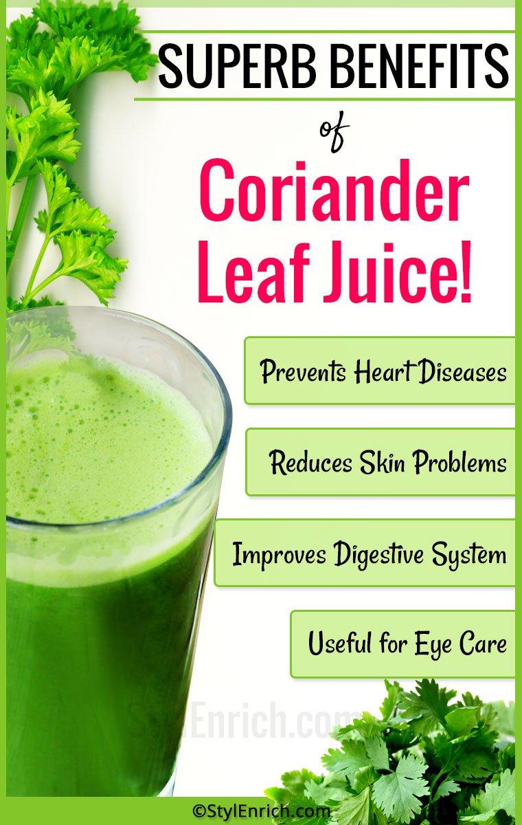 Cilantro Health Benefits or Coriander Leaves Benefits