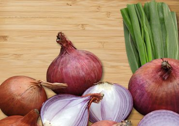 Health Benefits of Onions