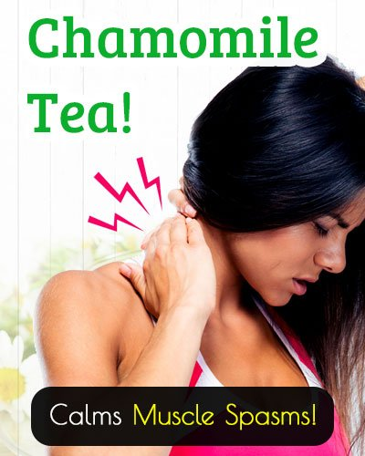 Chamomile Tea Calms The Muscle Spasms