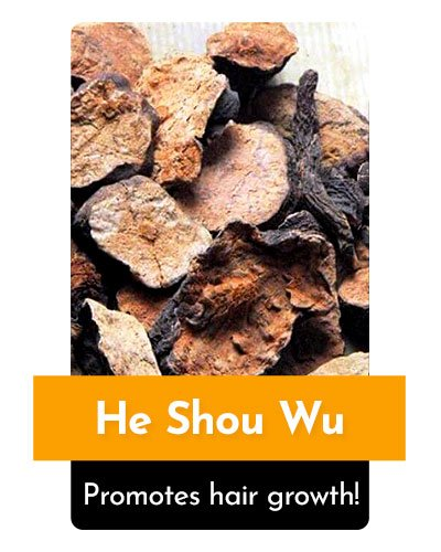 He Shou Wu Herb For Energy