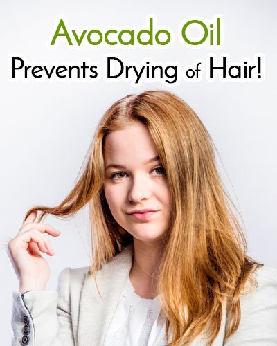 Avocado Oil Prevents Drying Of Hair