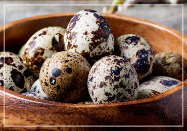 Quail Eggs Benefits
