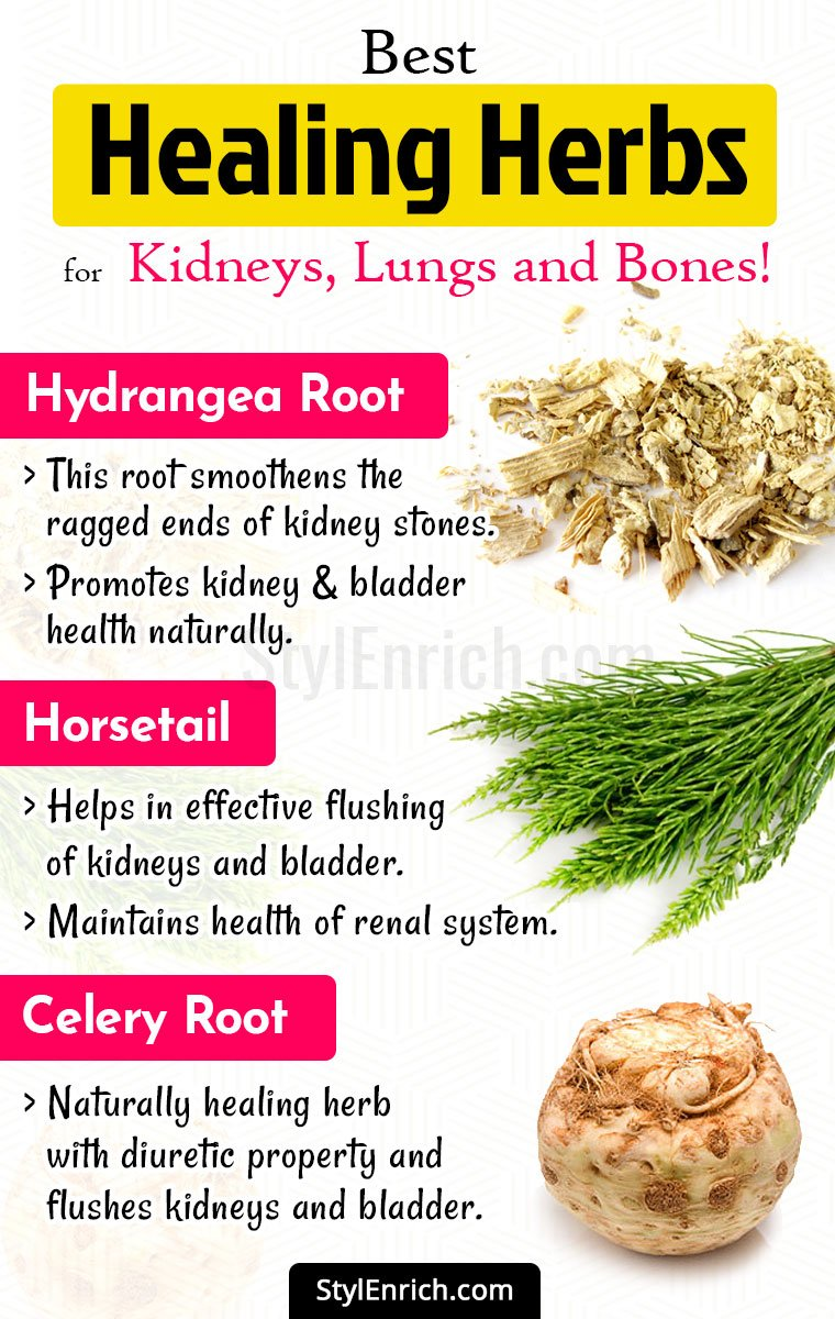 Healing Herbs for Your Good Health
