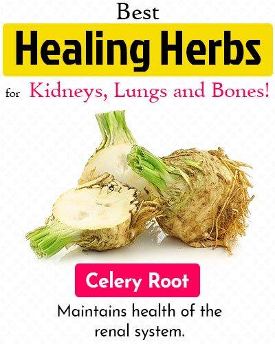 Celery Root Healing Herb