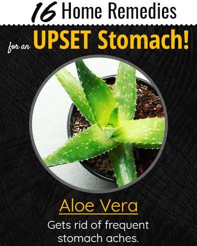 Aloe Vera For Upset Stomach