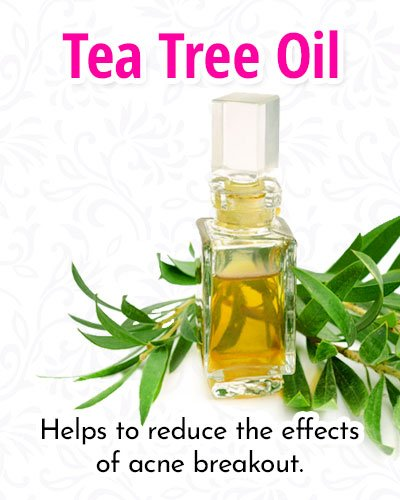 Tea Tree Facial Oils Mask Recipe