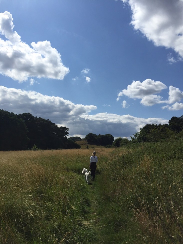 Walking through the English Countryside with Walter