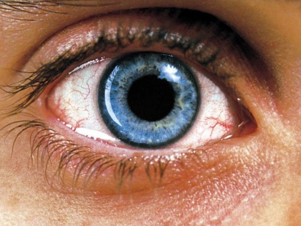 requiem-for-a-dream-eye-pupil