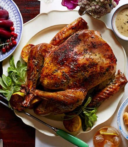 Fat Burning Foods for Men and Women - Turkey
