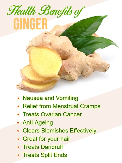Image result for iMAGES OF BENEFITS OF GINGER