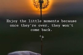 They won't Come Back - Good Quotes for New Day