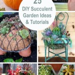 25 Diy Succulent Garden Ideas And Tutorials Styletic