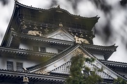 Have You Seen This Japanese Deer City? A Photo Diary of Nara, Osaka and Kyoto 24