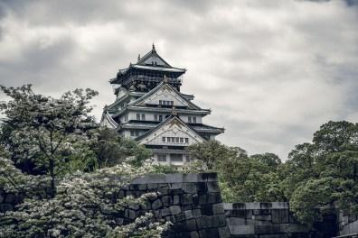 Have You Seen This Japanese Deer City? A Photo Diary of Nara, Osaka and Kyoto 26