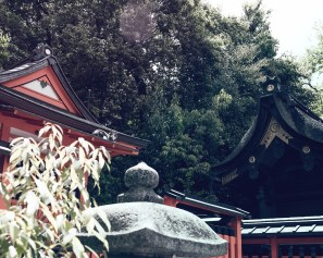 Have You Seen This Japanese Deer City? A Photo Diary of Nara, Osaka (and an onsen experience) and Kyoto 4
