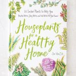 Houseplants for a Healthy Home Jon Vanzile