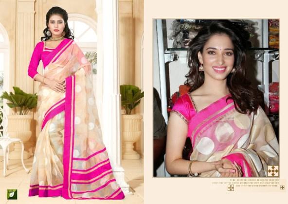 Indian formal saree