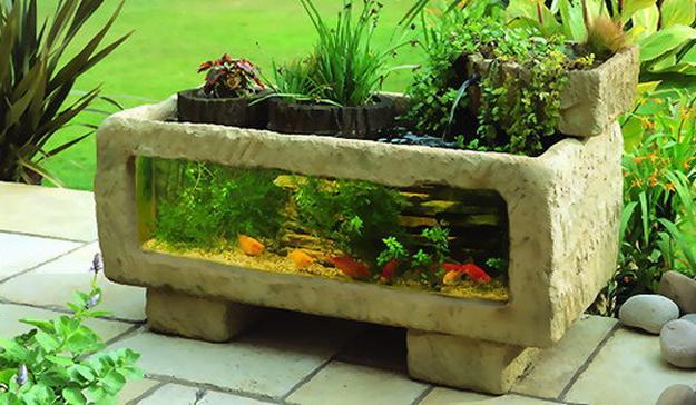 decoration of fish aquarium