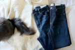 Curvy Fit Denim Comparison | Everlane Vs. American Eagle