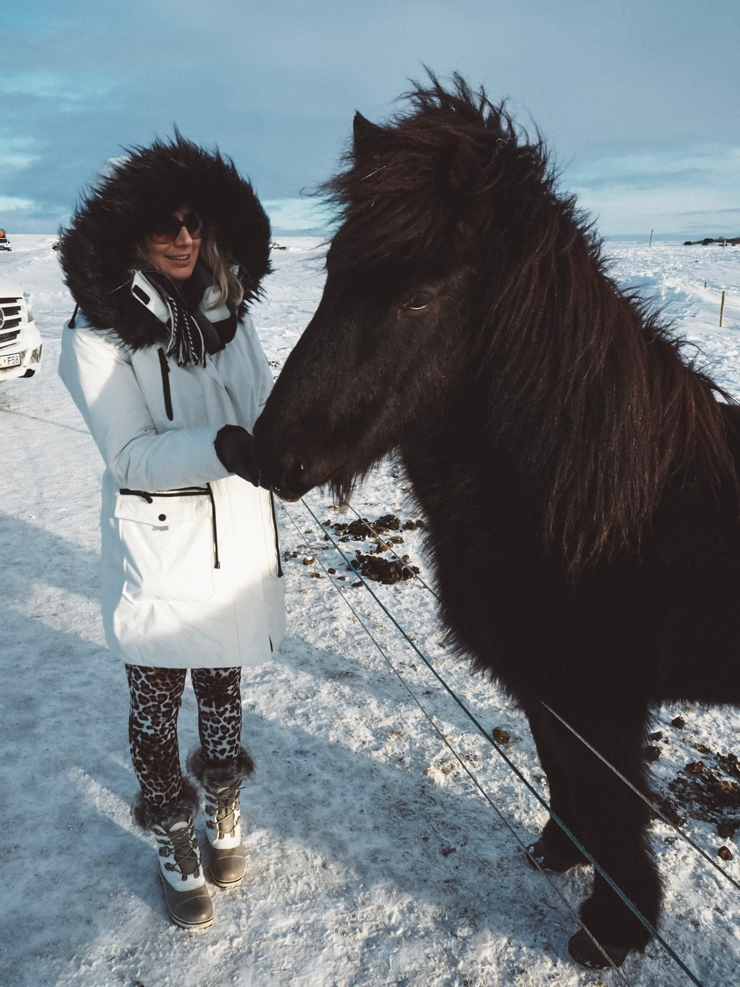 icelandic horse, fashion blogger, iceland, the golden circle