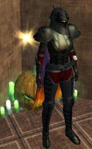 NotD app armour