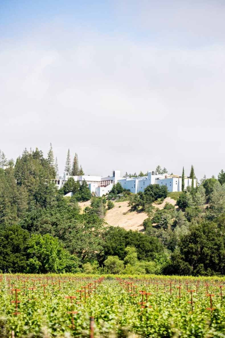 sterling vineyards view - The Best Food & Wine In Napa, California
