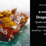 Dropshipping comparatif des 3 solutions ecommerce : WordPress, Shopify ou Dropizi