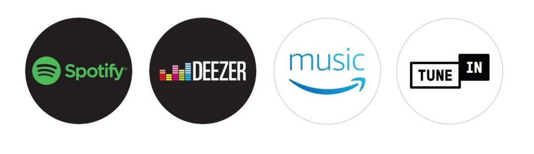 musique premium pour google home