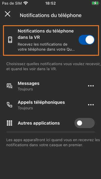 Activation notification telephone Oculus Quest