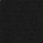Crinkle Nylon Black