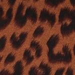 Print: Cocoa Leopard