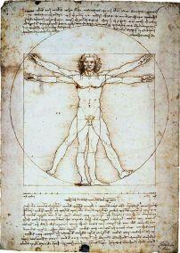 Da Vinci - The Vitruvian Man