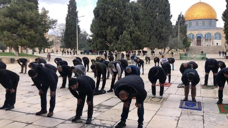 Makin Banyak Mualaf di Israel, Organisasi Yahudi Galau