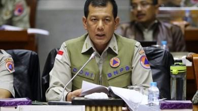 Photo of Kepala BNPB: Karhutla Sebagian Besar Ulah Manusia