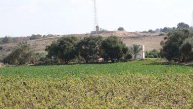 Photo of Israel Semprot Zat Berbahaya di Pertanian Gaza