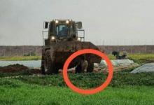 Photo of Langgar HAM dan Kejahatan Perang, Israel Seret Jenazah Palestina Pakai Buldozer