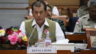 Photo of Tak Miliki Pakar Epidemologi, Kepala BNPB: Kami Hanya Punya Satu Dokter, Itu pun Dokter Umum