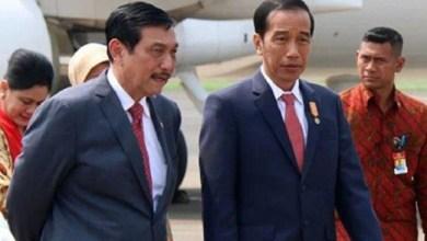Photo of Luhut Memang Hebat, Megawati dan PDIP Tak Berkutik