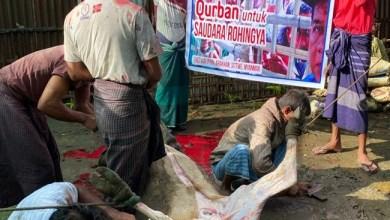 Photo of Laznas Dewan Dakwah: Alhamdulillah…Kurban Anda Dinikmati Ratusan Ribu Orang, dari Afrika hingga Papua