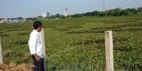 Jokowi Lakukan Komunikasi Persuasif Terus Untuk Relokasi Warga Waduk Ria Rio