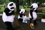 Penandatanganan Perjanjian Penyaluran Hibah TFCA untuk Konservasi Hutan di Kalimantan