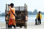 2-suara-jakarta-Salah-Satu-Anggota-MAPETALA-UNIB-sedang-menarik-sampah-kayu-yang-mengotori-pantai-bengkulu-Riki-Rahmansyah