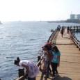 suara jakarta proyek Giant Sea Wall jakarta