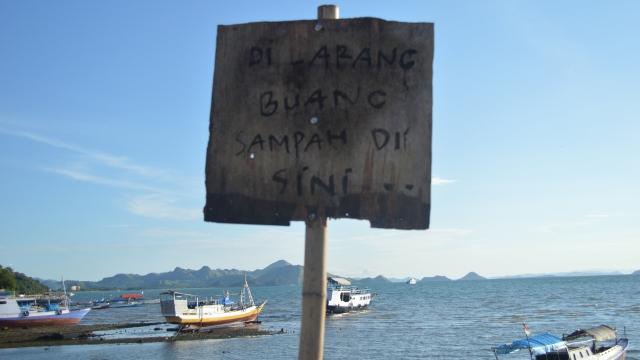 suara jakarta konservasi dan wisata bahari wwf indonesia