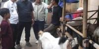 Lurah Johar Baru Himbau Para Pedagang Hewan Qurban Untuk Jaga Kebersihan