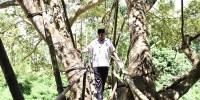 Biasa Dilewati Warga, Menteri Eko Jajal Jembatan Reot Ini